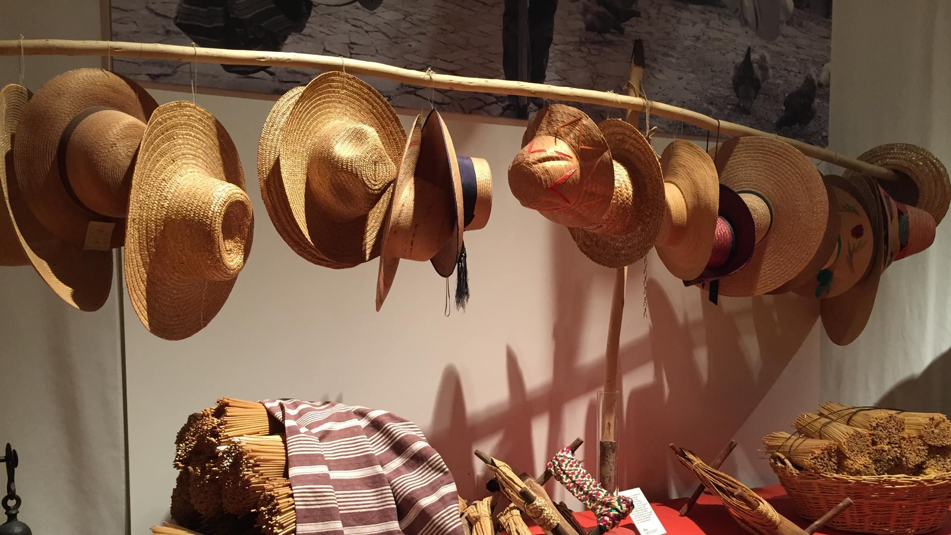 Il Cappello di Paglia - Tipicità Experience 1b8a4f34cccb
